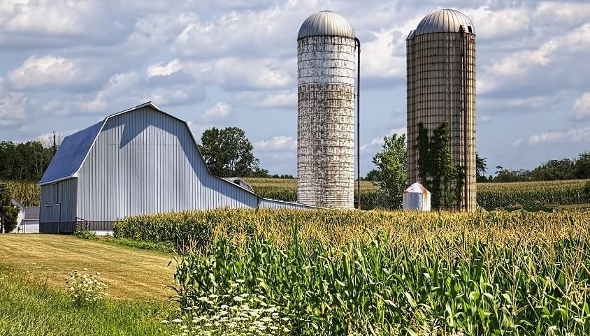 avantages charpente métal bâtiment agricole